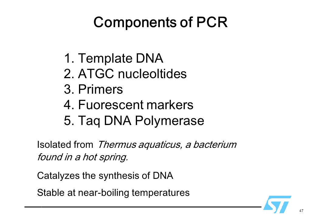 Components of PCR 1. Template DNA 2. ATGC nucleoltides 3. Primers