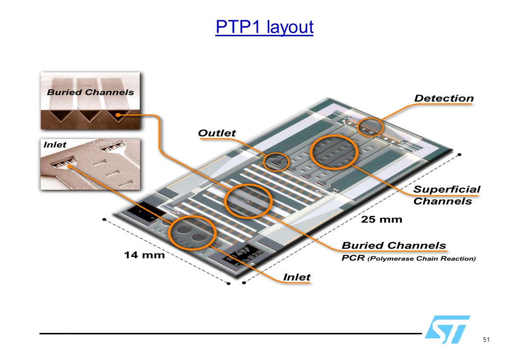 PTP1 layout