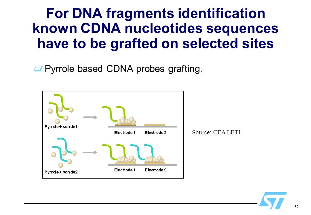 For DNA fragments identification known CDNA nucleotides sequences have to be grafted on selected sites