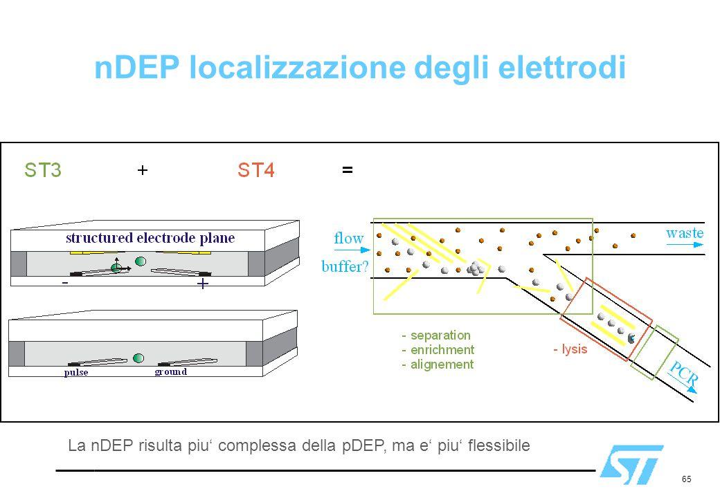 nDEP localizzazione degli elettrodi