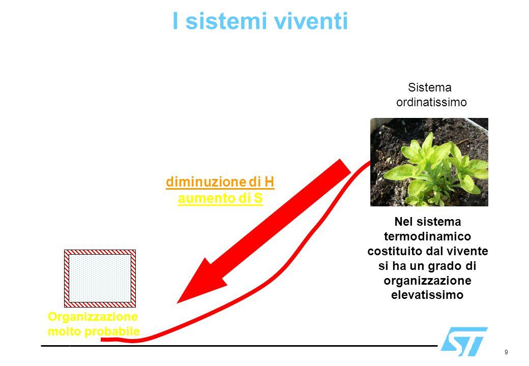 I sistemi viventi H S fenomeno spontaneo: diminuzione di H