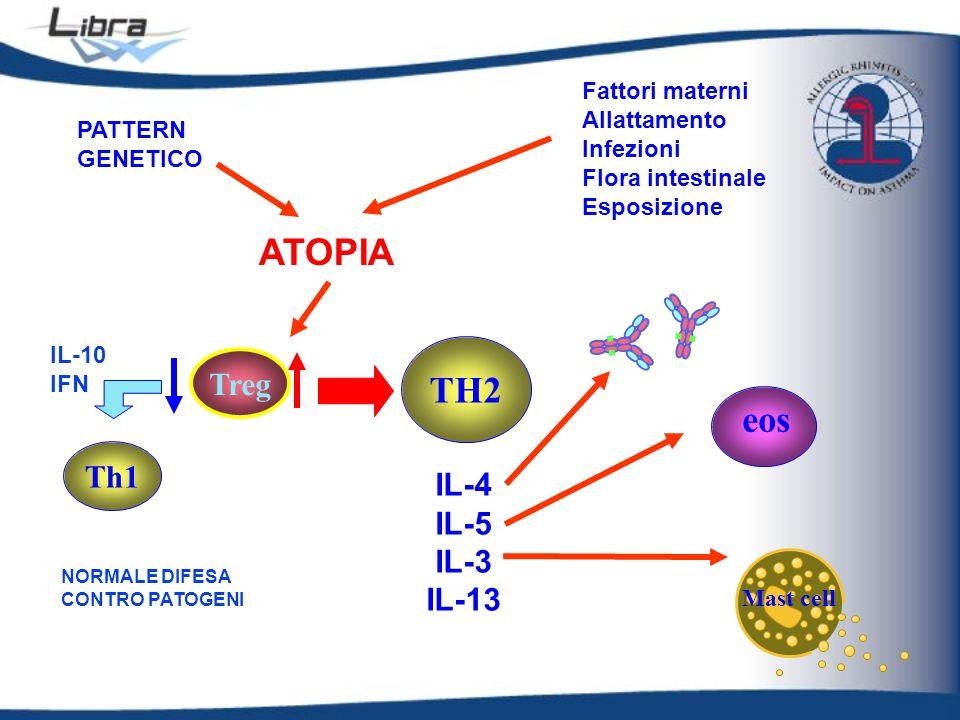 ATOPIA TH2 eos Treg Th1 IL-4 IL-5 IL-3 IL-13 Fattori materni
