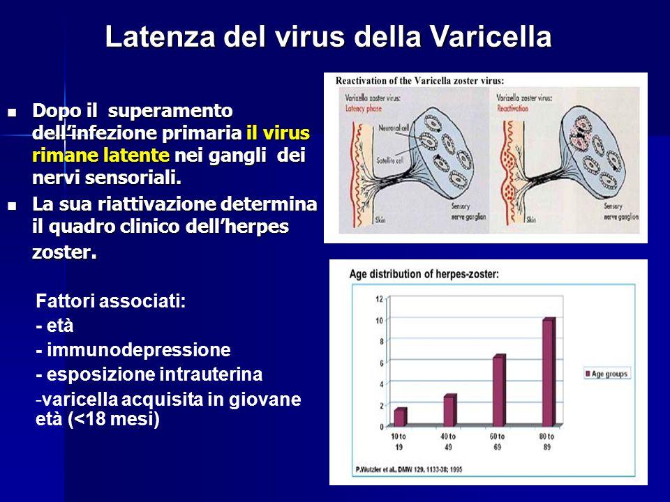 Latenza del virus della Varicella