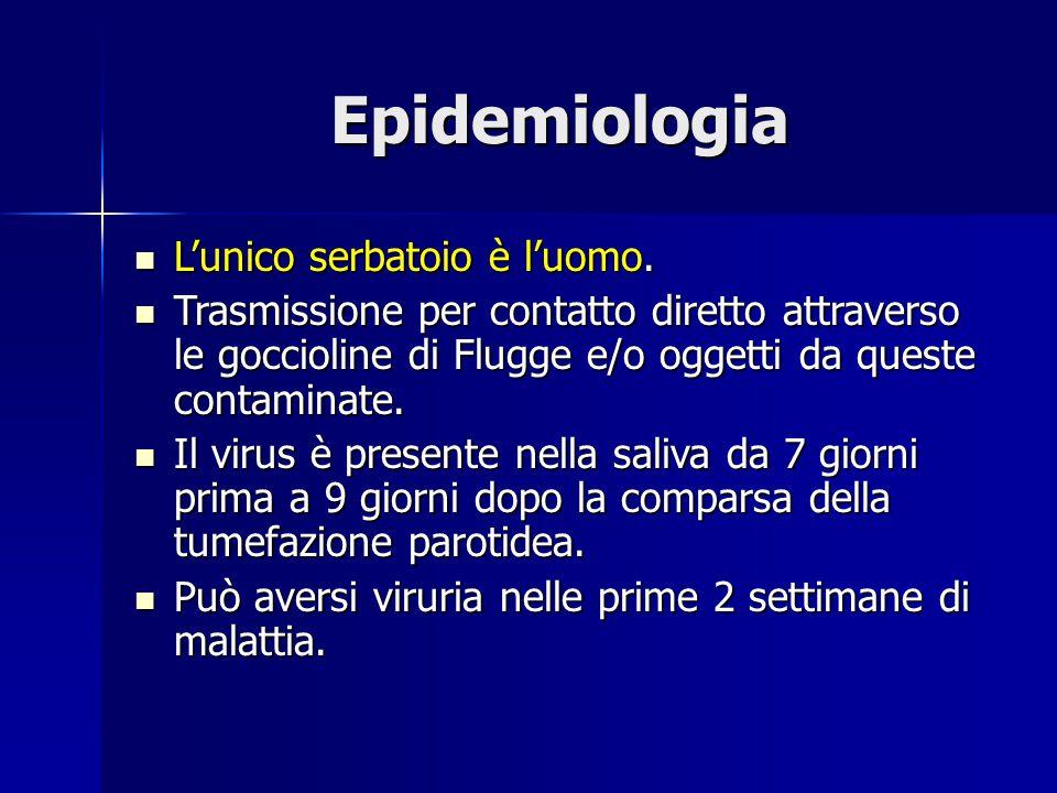 Epidemiologia L'unico serbatoio è l'uomo.