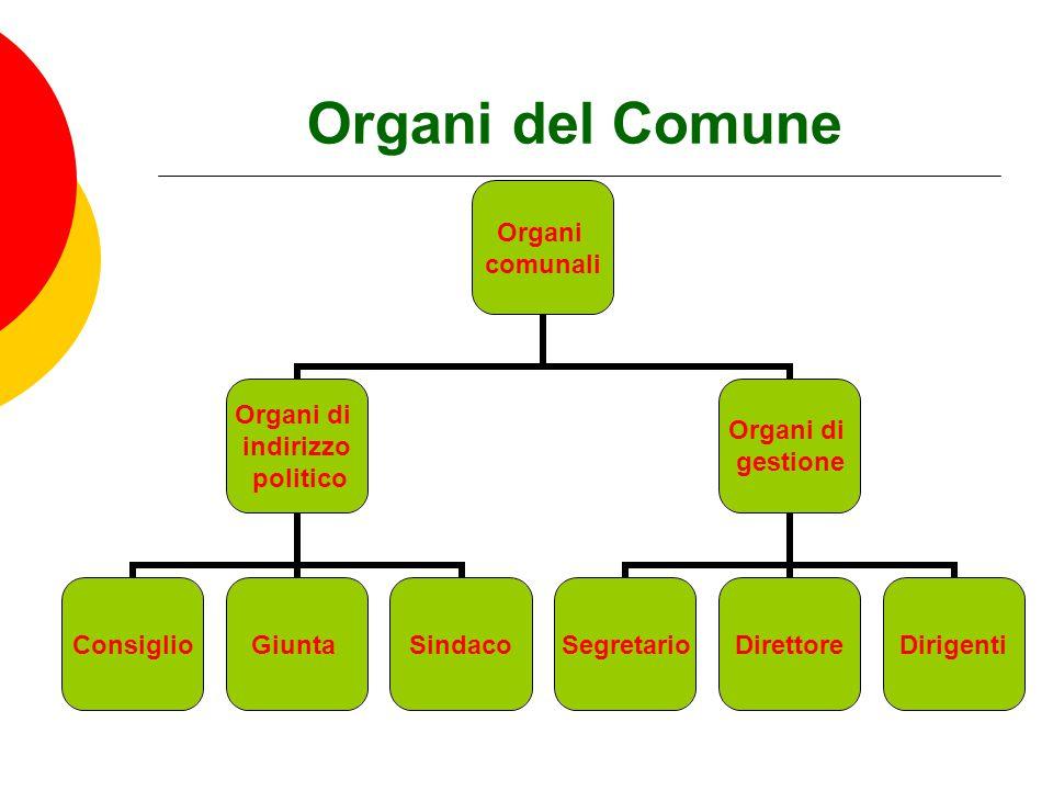 Organi del Comune