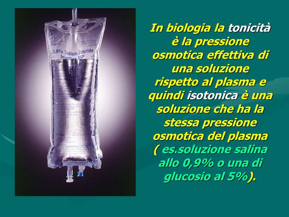 In biologia la tonicità è la pressione osmotica effettiva di una soluzione rispetto al plasma e quindi isotonica è una soluzione che ha la stessa pressione osmotica del plasma ( es.soluzione salina allo 0,9% o una di glucosio al 5%).