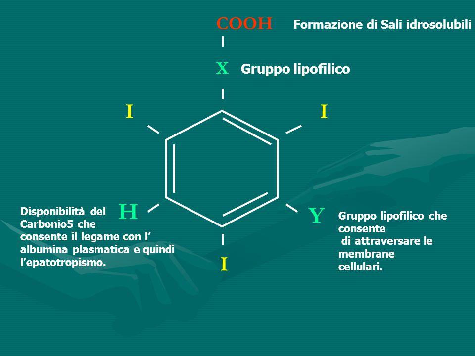 H Y I I I COOH X Gruppo lipofilico Formazione di Sali idrosolubili