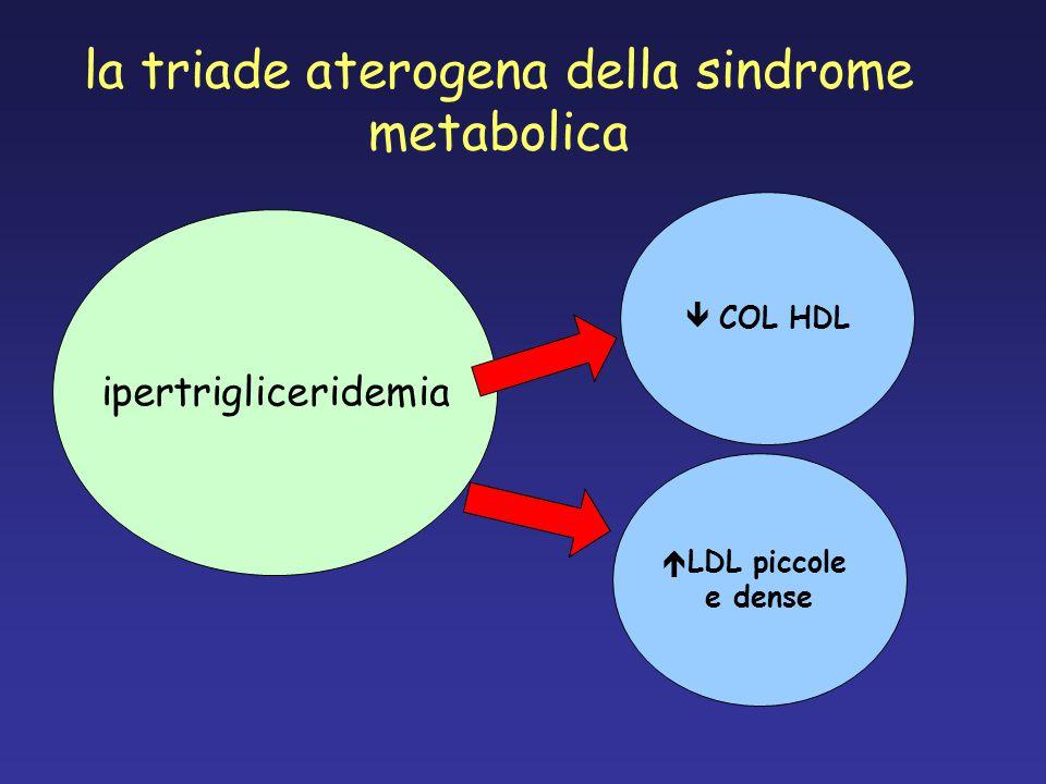la triade aterogena della sindrome metabolica