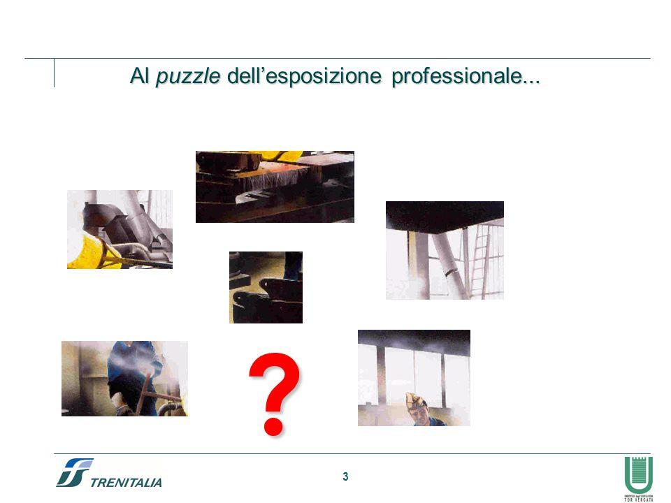 Al puzzle dell'esposizione professionale...