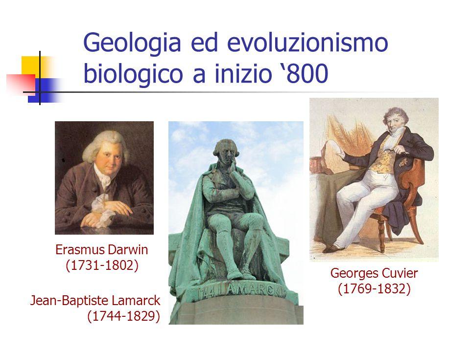 Geologia ed evoluzionismo biologico a inizio '800