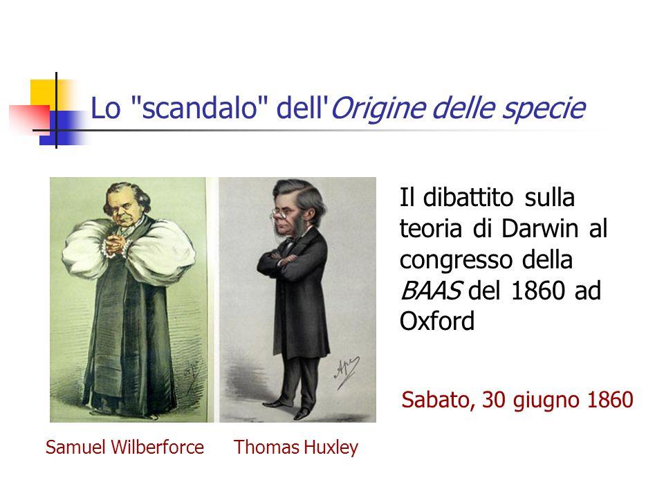 Lo scandalo dell Origine delle specie