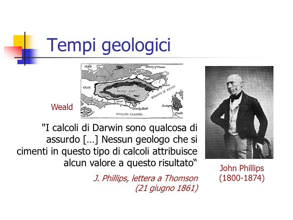 Tempi geologici Weald.