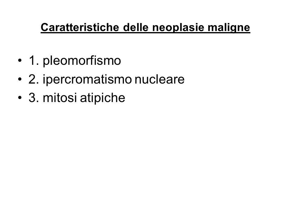 Caratteristiche delle neoplasie maligne