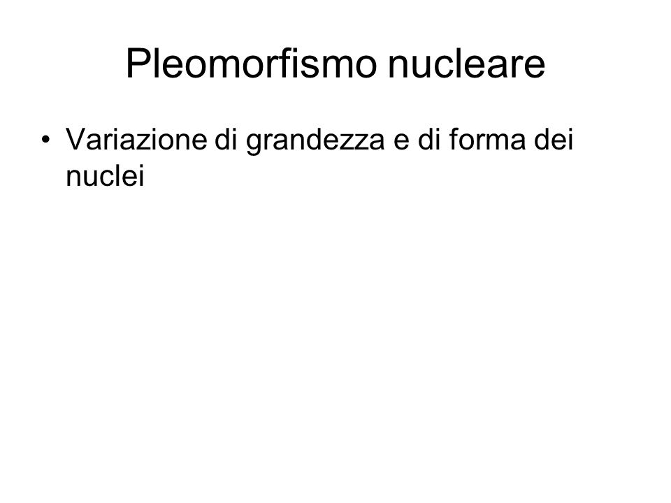 Pleomorfismo nucleare