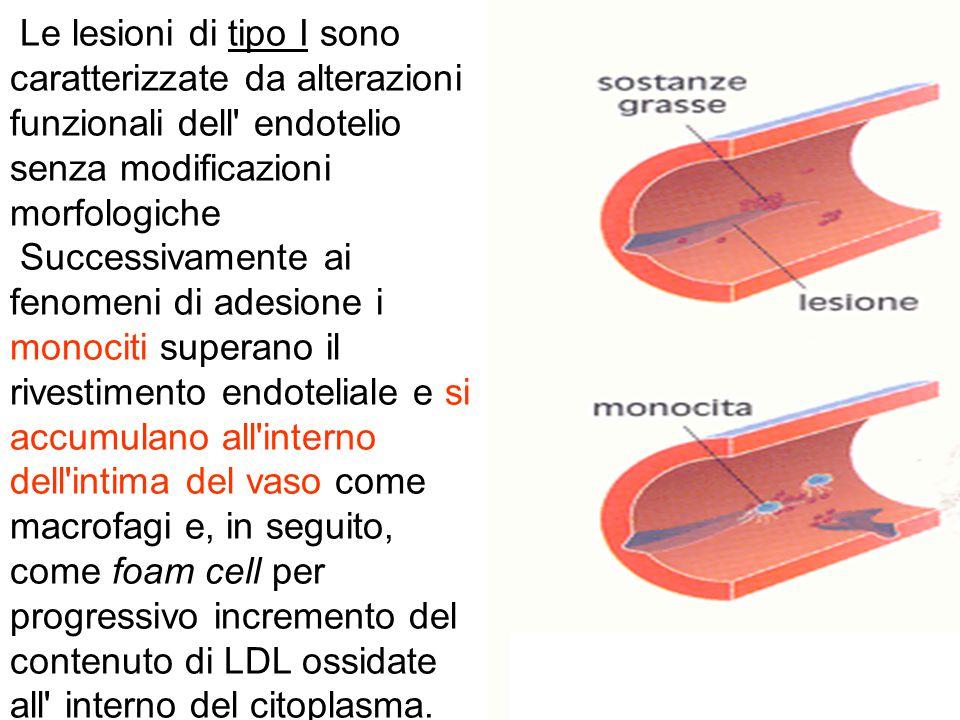 Le lesioni di tipo I sono caratterizzate da alterazioni funzionali dell endotelio senza modificazioni morfologiche