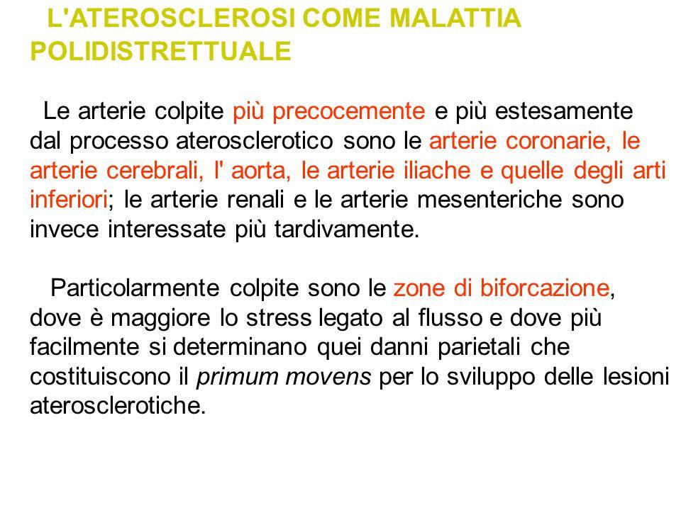 L ATEROSCLEROSI COME MALATTIA POLIDISTRETTUALE
