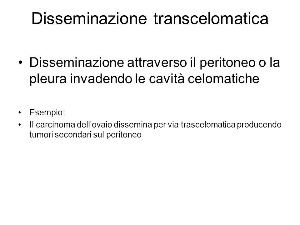 Disseminazione transcelomatica