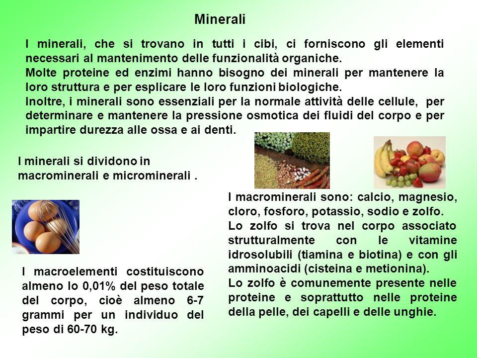 Minerali I minerali, che si trovano in tutti i cibi, ci forniscono gli elementi necessari al mantenimento delle funzionalità organiche.