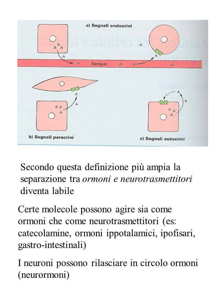 Secondo questa definizione più ampia la separazione tra ormoni e neurotrasmettitori diventa labile