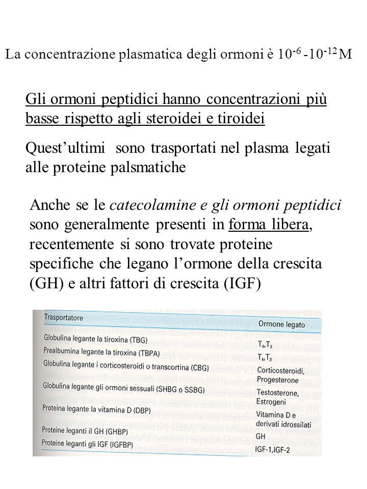 La concentrazione plasmatica degli ormoni è 10-6 -10-12 M