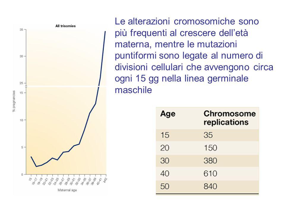 Le alterazioni cromosomiche sono più frequenti al crescere dell'età materna, mentre le mutazioni puntiformi sono legate al numero di divisioni cellulari che avvengono circa ogni 15 gg nella linea germinale maschile