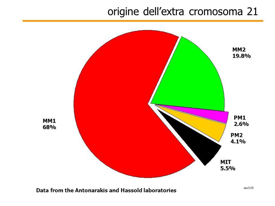 origine dell'extra cromosoma 21