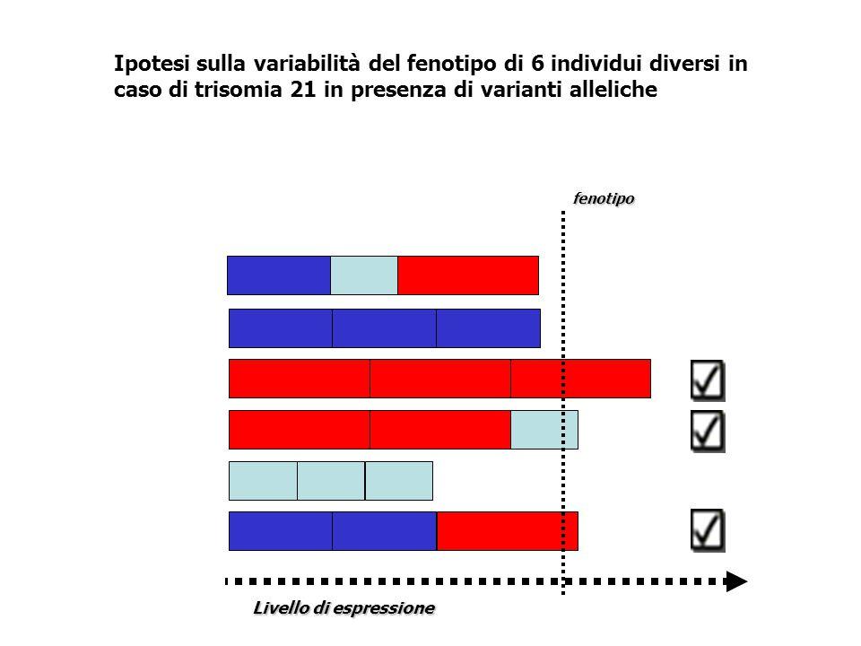 Ipotesi sulla variabilità del fenotipo di 6 individui diversi in caso di trisomia 21 in presenza di varianti alleliche