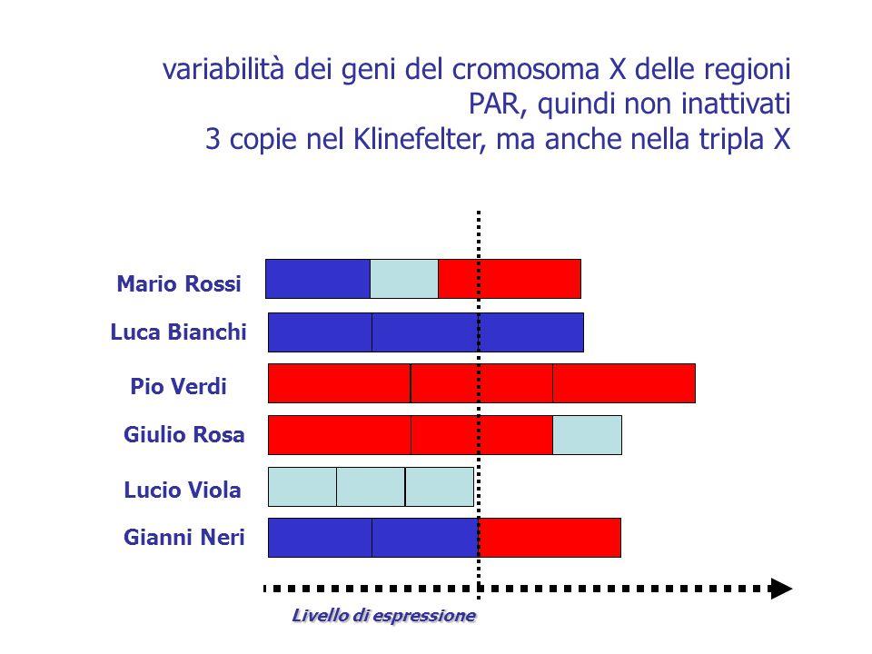 3 copie nel Klinefelter, ma anche nella tripla X