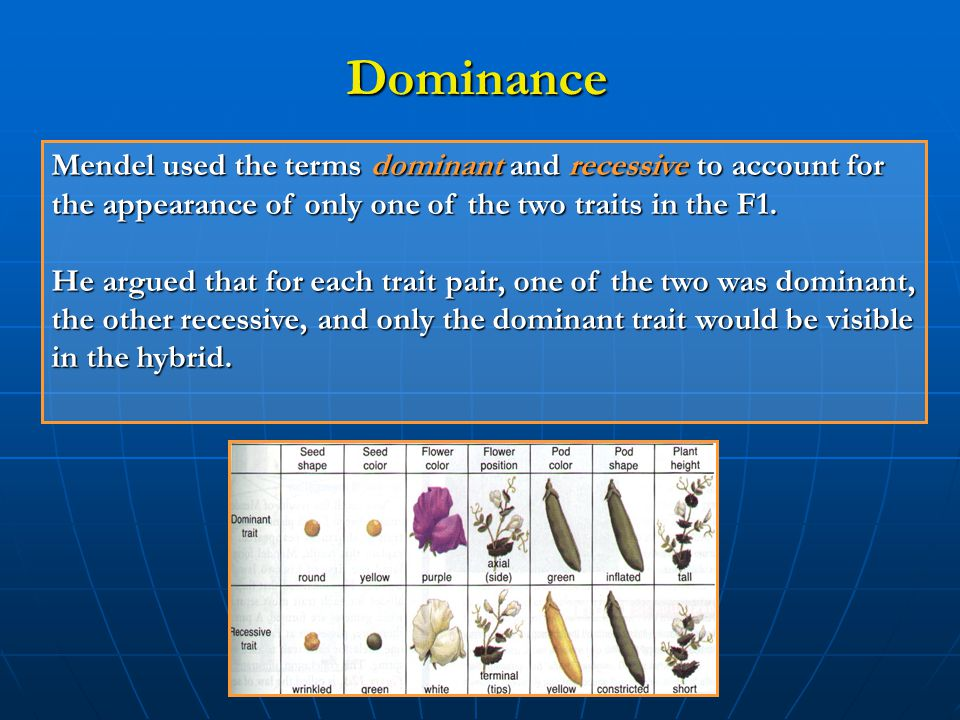 Dominance Mendel used the terms dominant and recessive to account for the appearance of only one of the two traits in the F1.