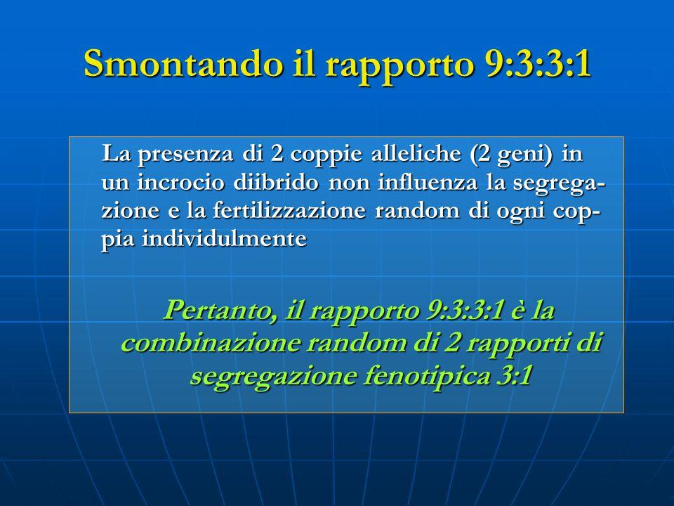 Smontando il rapporto 9:3:3:1