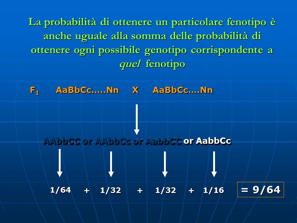 La probabilità di ottenere un particolare fenotipo è anche uguale alla somma delle probabilità di ottenere ogni possibile genotipo corrispondente a quel fenotipo