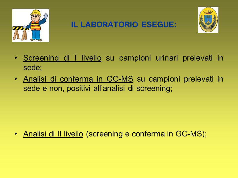 IL LABORATORIO ESEGUE: