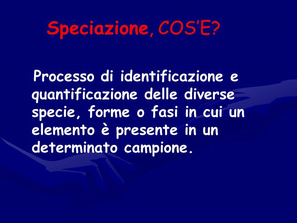 Speciazione, COS'E