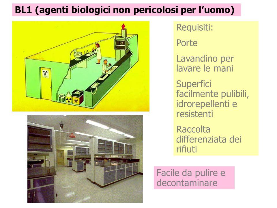 BL1 (agenti biologici non pericolosi per l'uomo)