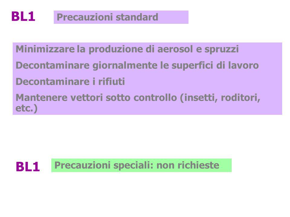 BL1 BL1 Precauzioni standard