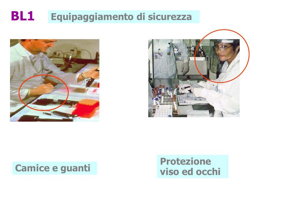 BL1 Equipaggiamento di sicurezza Protezione viso ed occhi