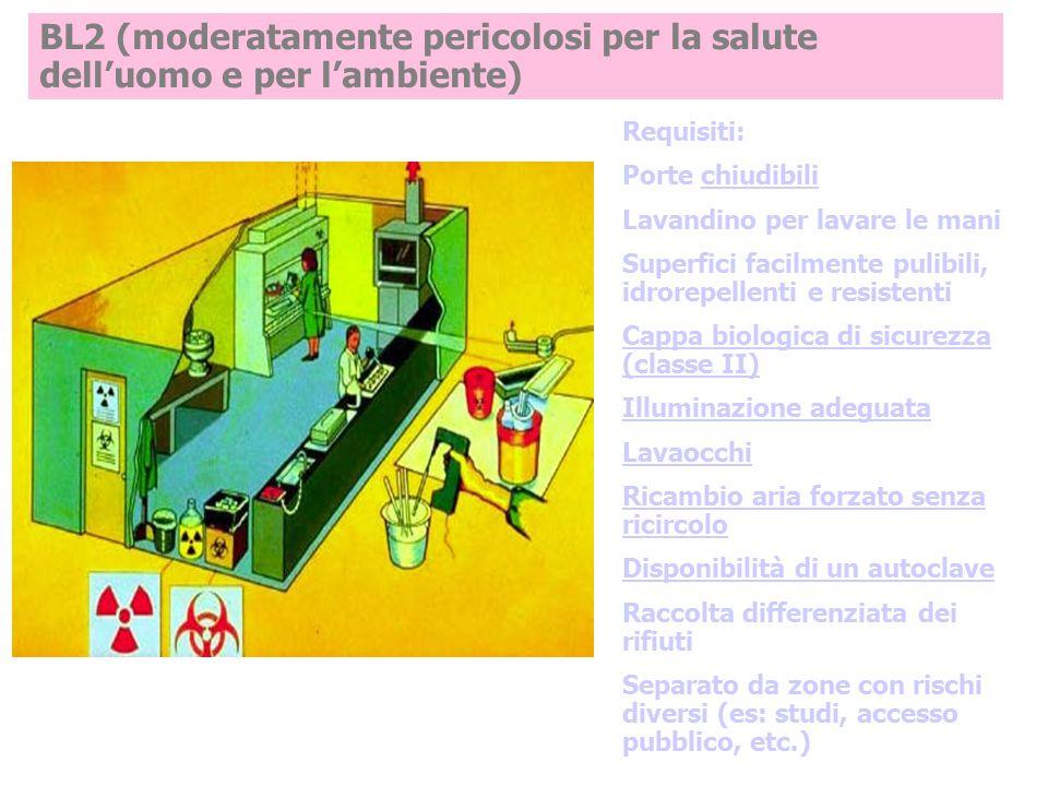 BL2 (moderatamente pericolosi per la salute dell'uomo e per l'ambiente)