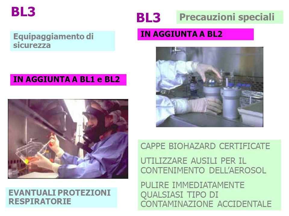 BL3 BL3 Precauzioni speciali CAPPE BIOHAZARD CERTIFICATE