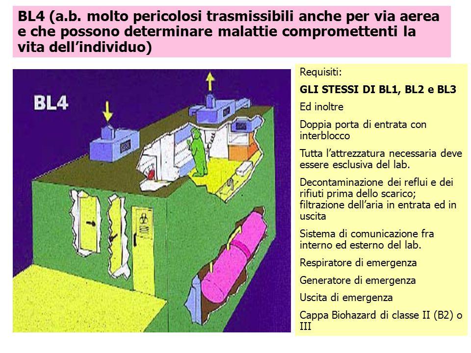 BL4 (a.b. molto pericolosi trasmissibili anche per via aerea e che possono determinare malattie compromettenti la vita dell'individuo)