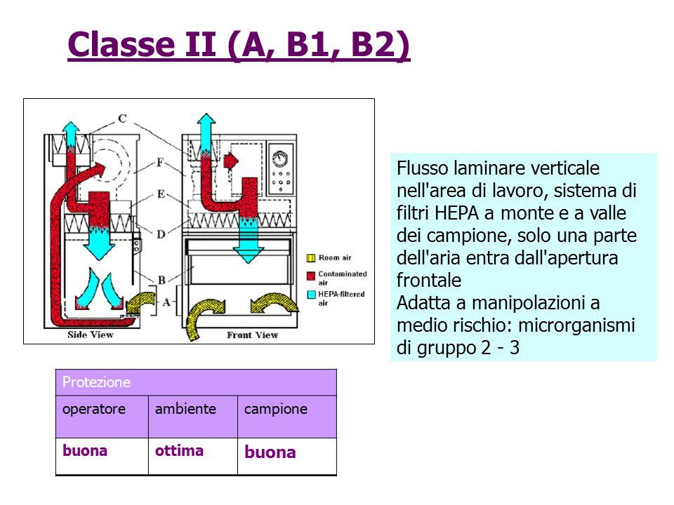 Classe II (A, B1, B2)