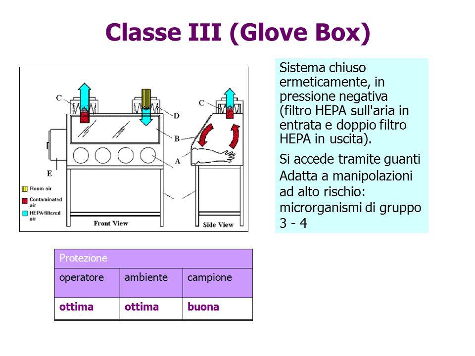Classe III (Glove Box) Sistema chiuso ermeticamente, in pressione negativa (filtro HEPA sull aria in entrata e doppio filtro HEPA in uscita).