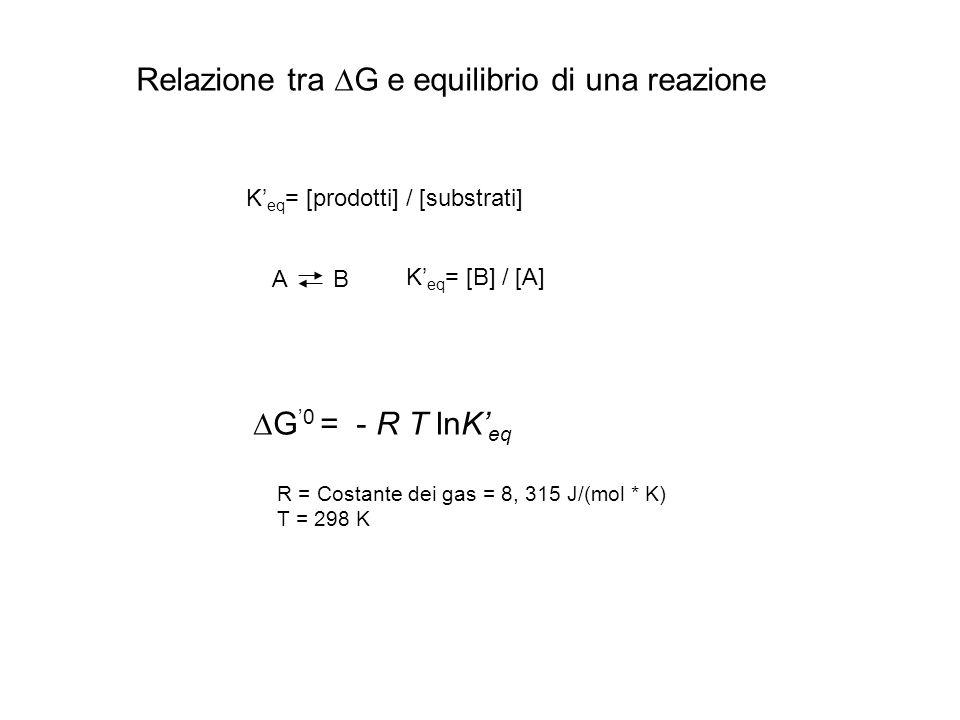 Relazione tra DG e equilibrio di una reazione