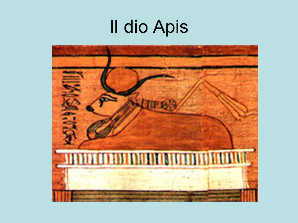 Il dio Apis