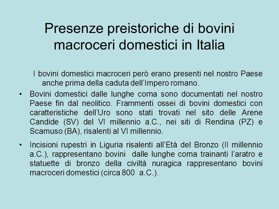 Presenze preistoriche di bovini macroceri domestici in Italia