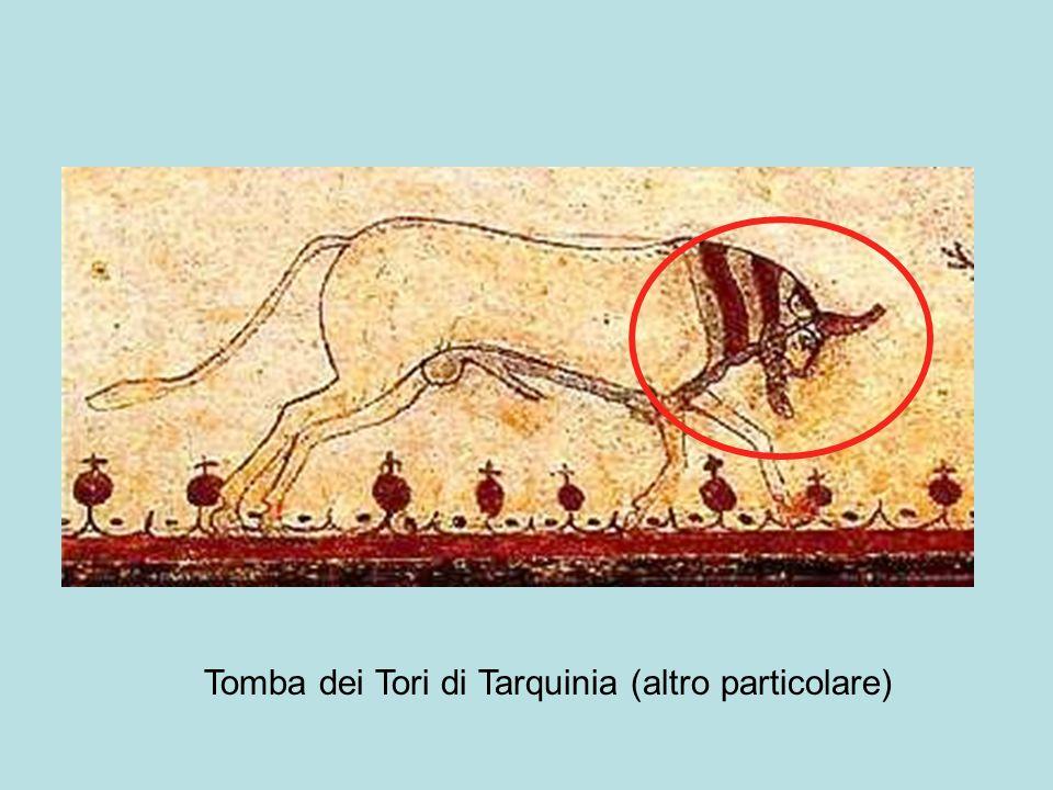 Tomba dei Tori di Tarquinia (altro particolare)