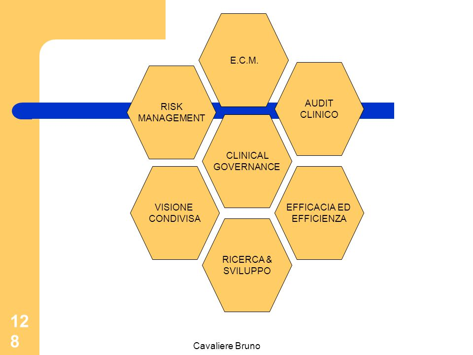 E.C.M. AUDIT. CLINICO. RISK. MANAGEMENT. CLINICAL. GOVERNANCE. VISIONE. CONDIVISA. EFFICACIA ED.