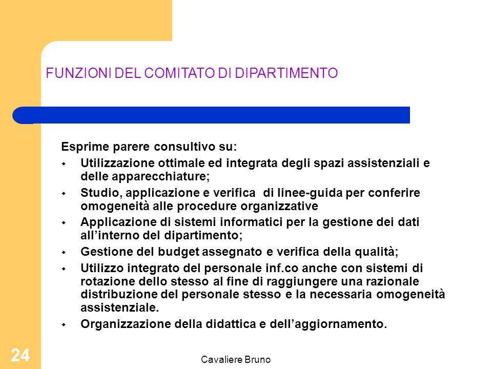 FUNZIONI DEL COMITATO DI DIPARTIMENTO