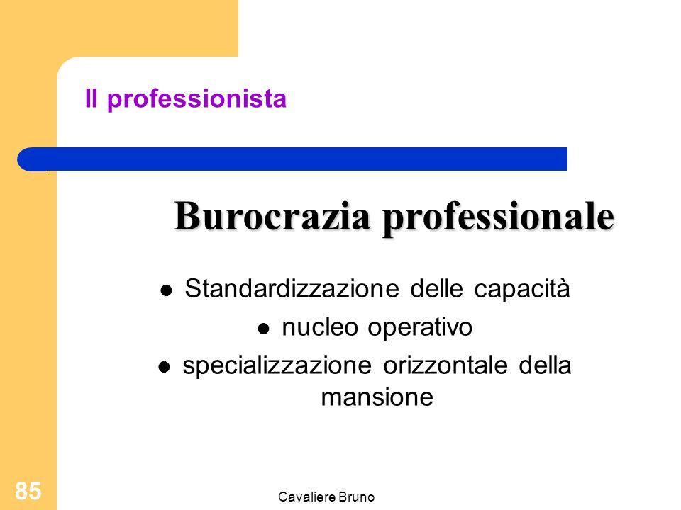Burocrazia professionale