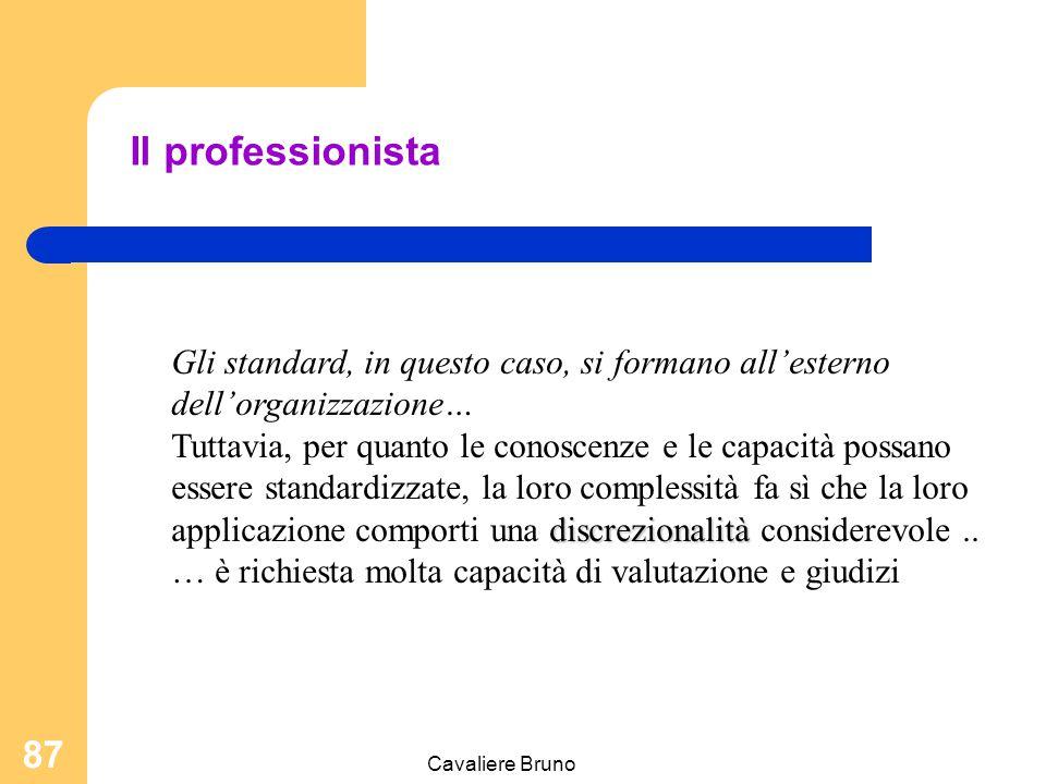 Il professionista Gli standard, in questo caso, si formano all'esterno dell'organizzazione…