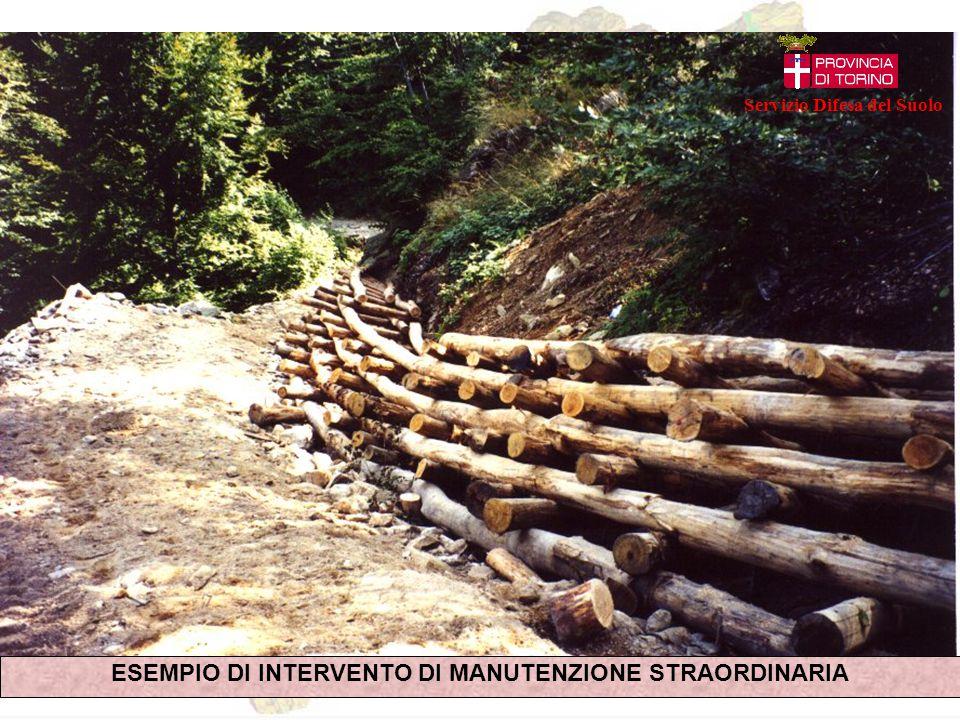 ESEMPIO DI INTERVENTO DI MANUTENZIONE STRAORDINARIA